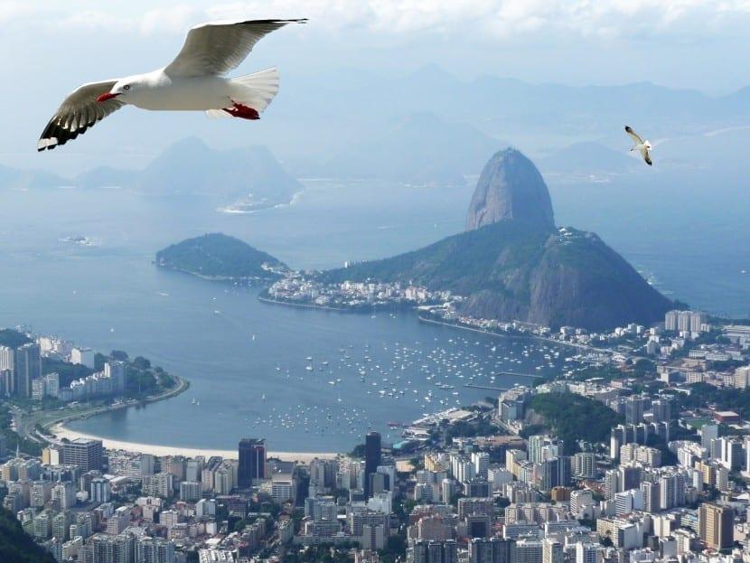 brasil es uno de los mercados emergentes en donde se puede operar