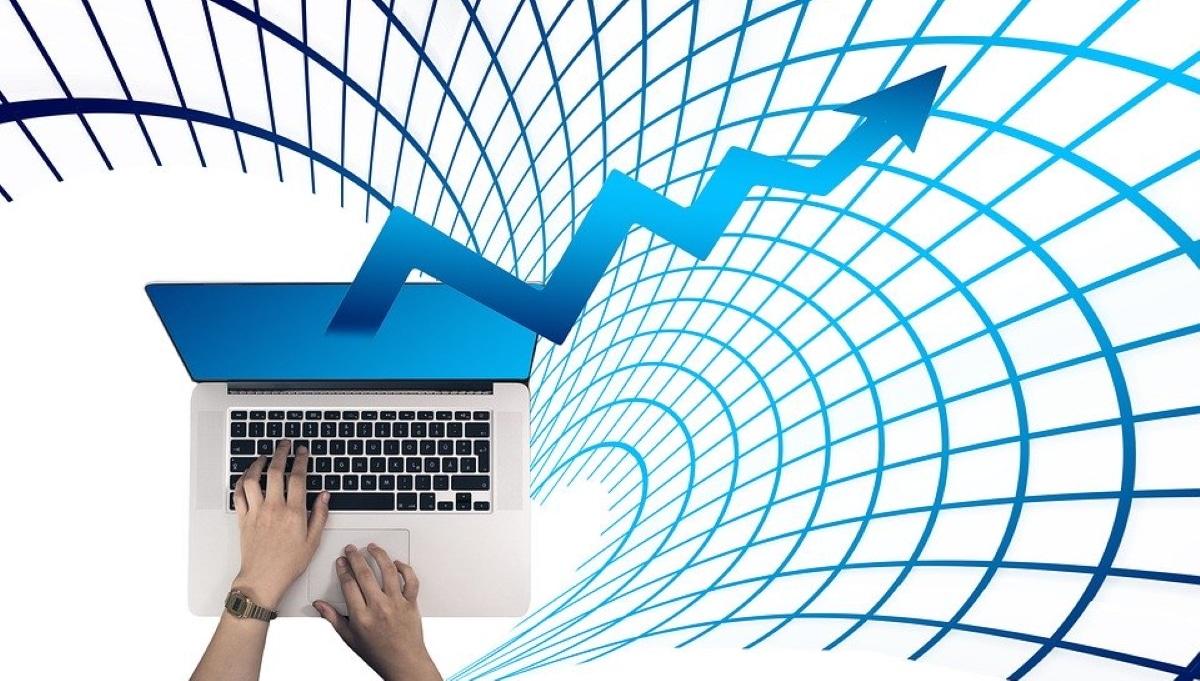 Identificar y seleccionar empresas con moats sólidos y rentables