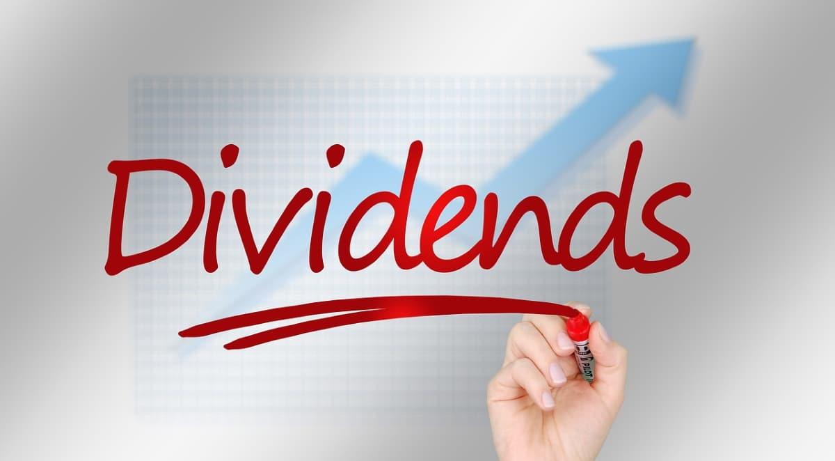 Explicación sobre lo que son los dividendos