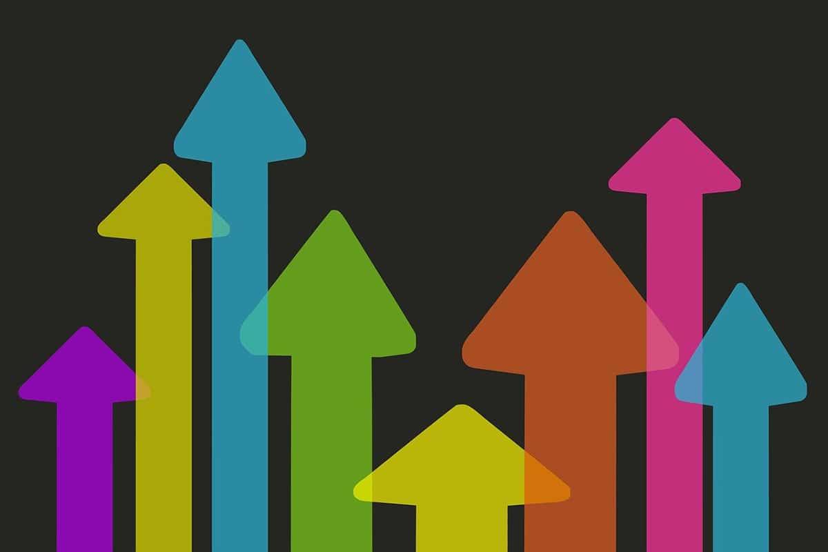 El sector terciario es considero el sector de la producción